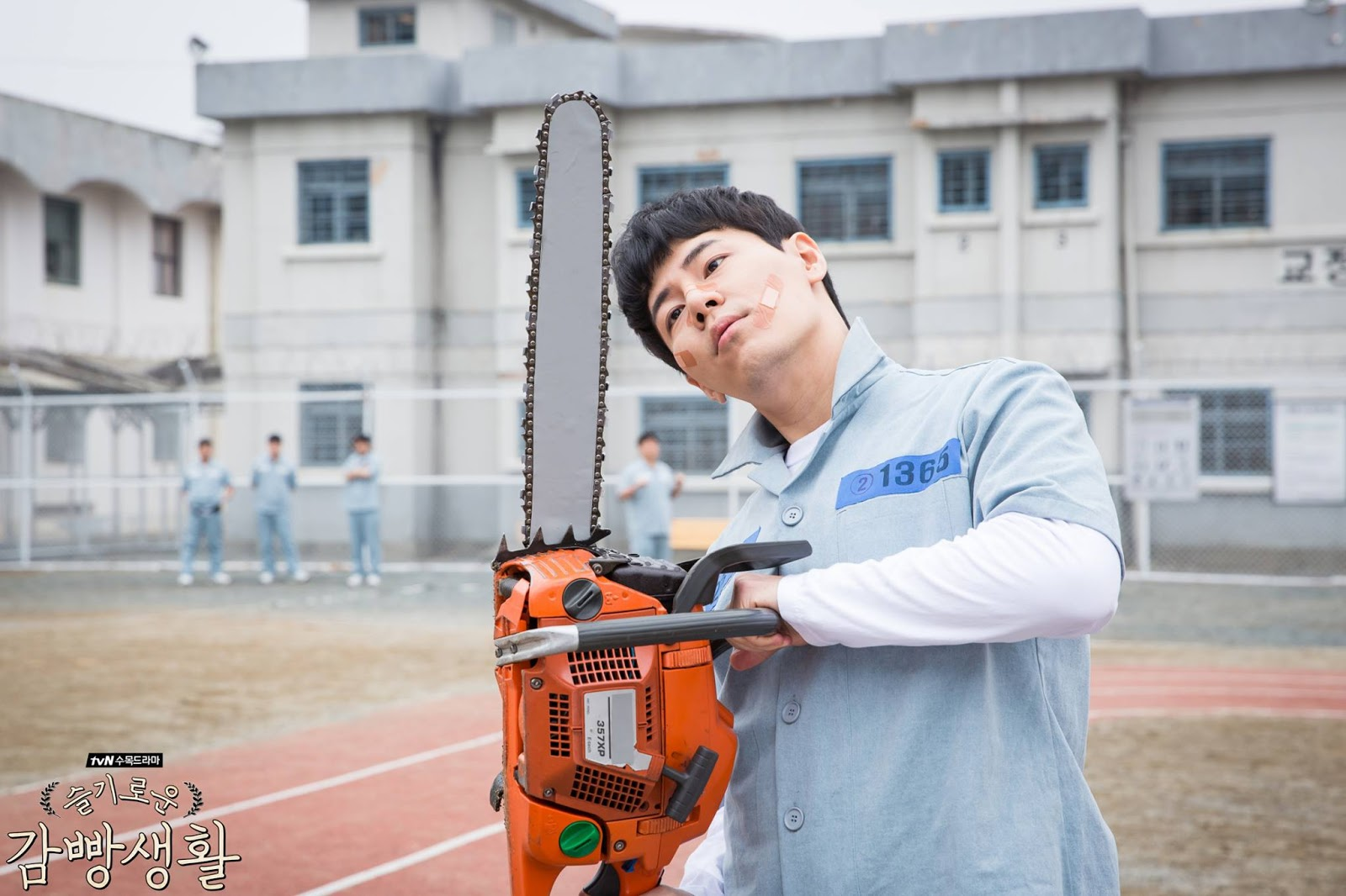 looney prison playbook